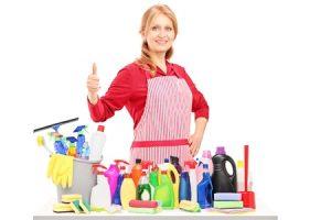 Entrust Payroll Service household work image
